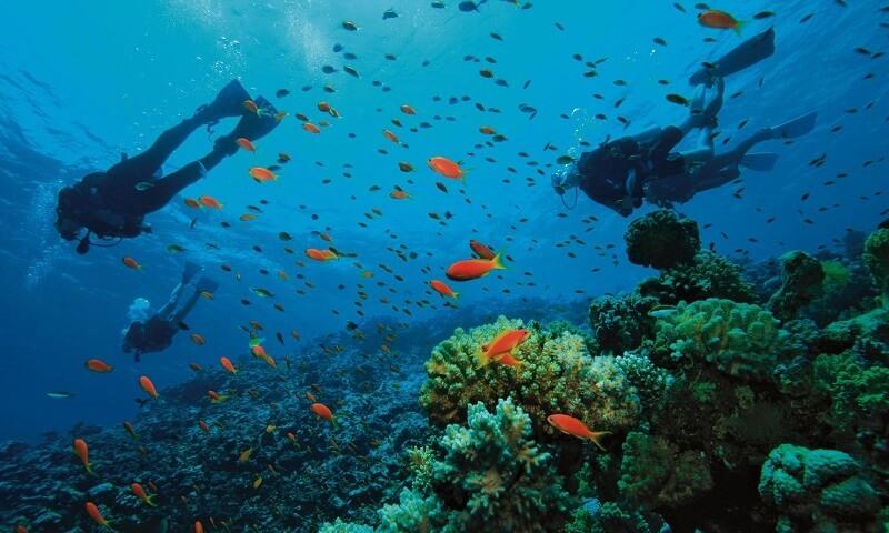 Buceo en Mindanao