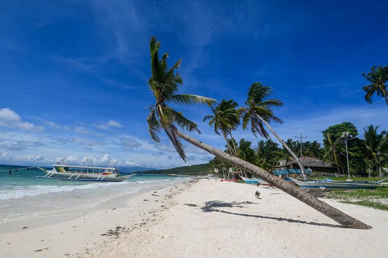 Carabao Island - Tablas